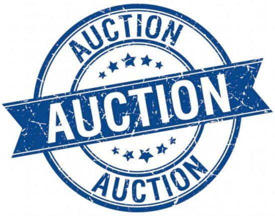 PutinBay Auction